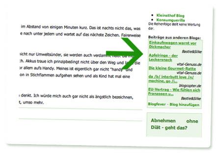 Beispiel für Blogfever-Anzeigen