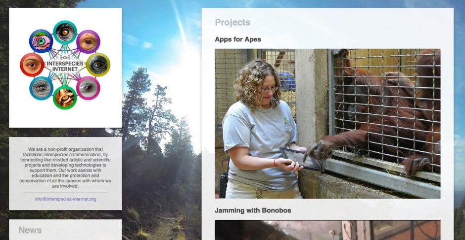 interspecies internet wenn delfine online gehen  upload