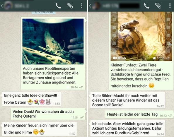 """Abbildung 2: Beispielhafte WhatsApp-Chats zu """"Das große Schlüpfen"""""""